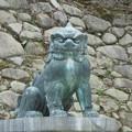 写真: 狛犬さん