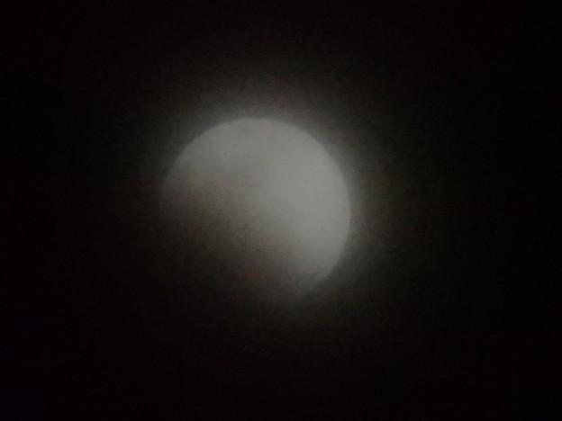 Photos: 月食なう