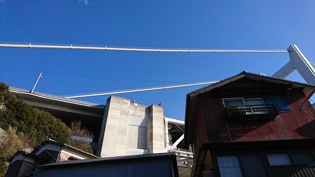 Photos: ゴジラと同居する町