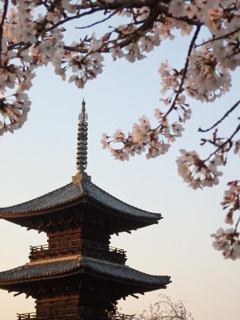 お寺の春4