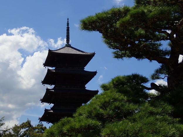 Photos: 備中国分寺