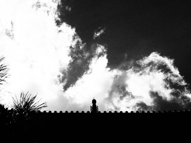 写真: 天を衝く