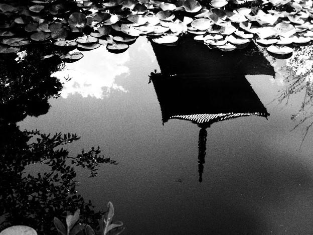 写真: 塔と池
