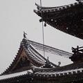 Photos: 雪の西大寺観音院3