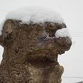 Photos: つ、冷てぇ~\(>_<)/