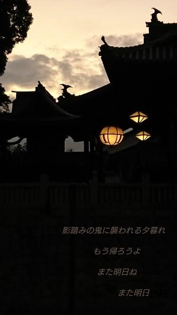 Photos: また明日