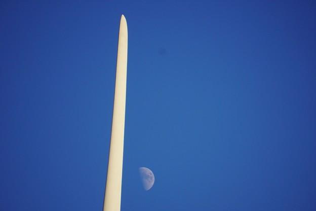 月を切ってみた