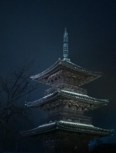 Photos: 霧の塔