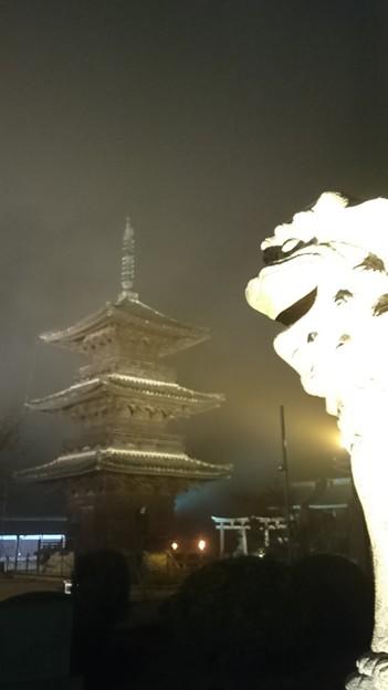 Photos: 悪に染まる狛犬(おまけ)
