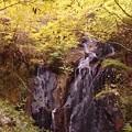 Photos: 滝(秋の姿)