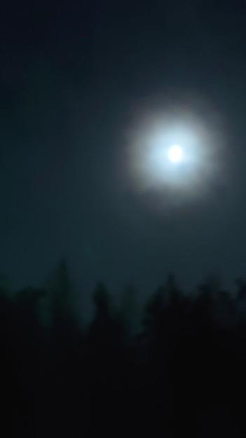いつか見上げた月