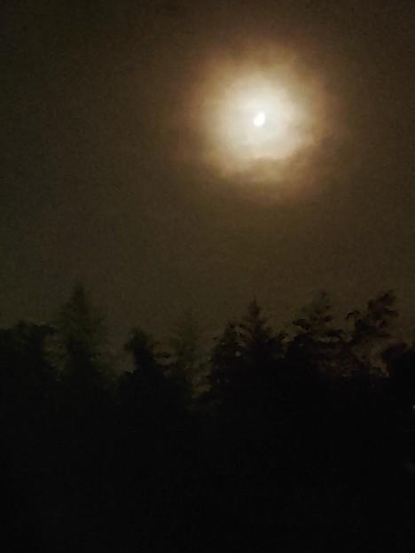 Photos: 古きに巡らせし月夜