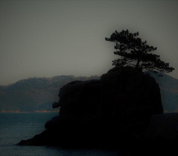 Photos: 天狗