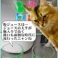 Photos: 2020-03-16-Mon-02-Powdered-juice_DSCN8913~DSCN8917