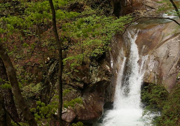 rs-170514_S1623_貞泉の滝(西沢渓谷) (1)