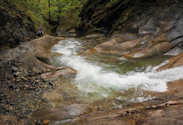 rs-170514_S1624_貞泉の滝の上流(西沢渓谷) (4)
