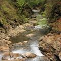 rs-170514_S1633_方杖橋から下流を(西沢渓谷)