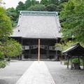 Photos: 180911_18_本堂・S1650・α60(妙本寺)