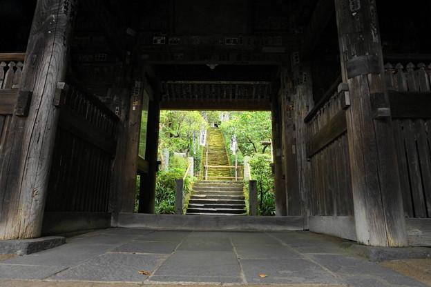 180911_57_三門からみた苔の階段・S1650・α60(杉本寺) (3)