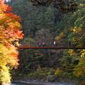 181116_14_氷川小橋と人影・S18200・α60(多摩川)(26)