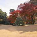 181128_01_庭園の様子・S18200・α60(殿ヶ谷庭園) (681)