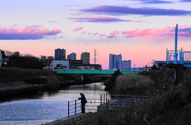 190102_Y51_釣り人のいる川で・S18200・α60(矢上川) (7)