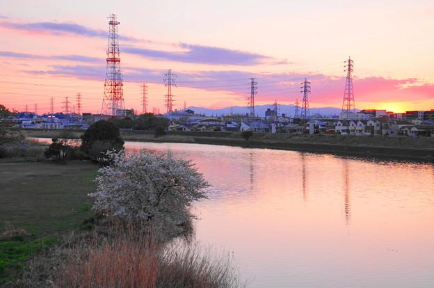 190324_Y02_夕景と桜と富士山・S18200(鶴見川) (3)