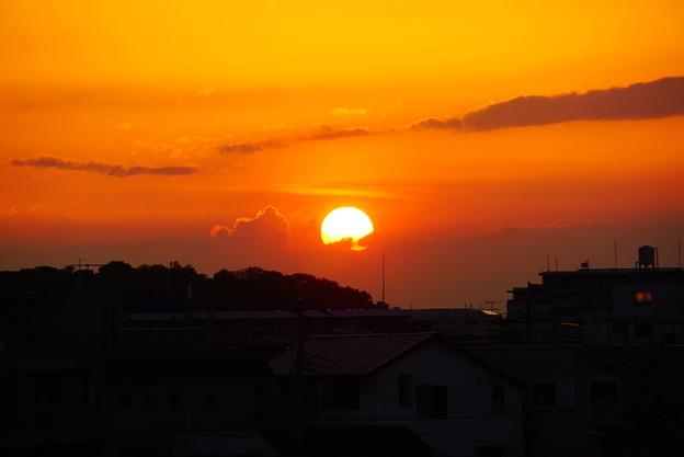 190425_62R_落陽・S18200(鶴見川) (2)