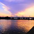 Photos: 190605_81Y_夕景の川・S18200(多摩川) (63)