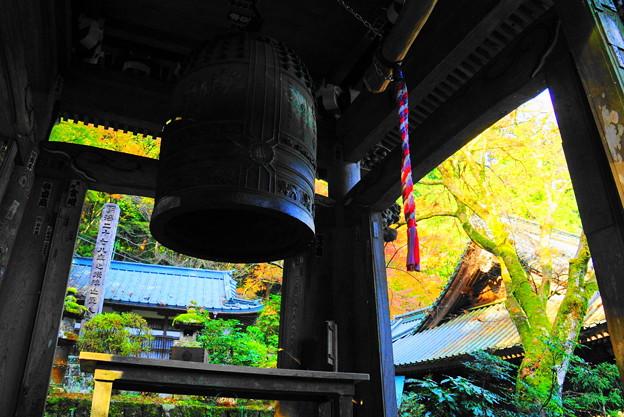 191201_α11_紅葉狩り・S18200(最乗寺) (127)