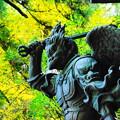 191201_α11_紅葉狩り・S18200(最乗寺) (180)