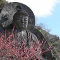 Photos: 200224_29R_大仏様と紅梅・RX10M3(日本寺) (17)