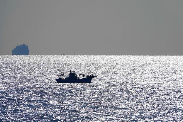 200224_64R_リュウ君・沖の漁船・RX10M3(金谷) (4)