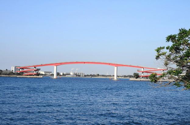 200224_71R_中之島大橋・RX10M3(木更津) (1)