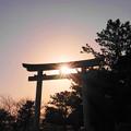 Photos: 200224_73R_鳥居からの光芒・RX10M3(木更津) (5)