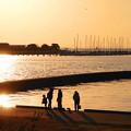Photos: 200224_76R_漁港付近にて・RX10M3(木更津) (9)