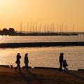 Photos: 200224_76R_漁港付近にて・RX10M3(木更津) (31)