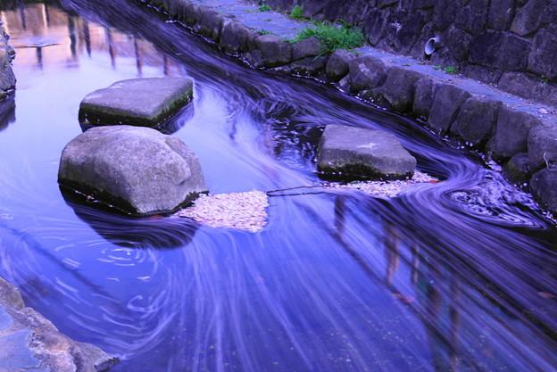 200404_52S_花びらをスローで・S18200(平和公園) (27)