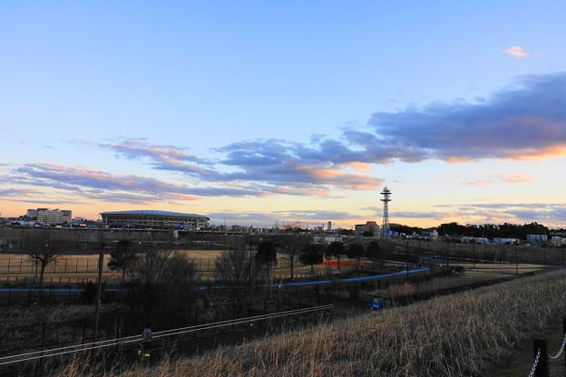 200201_56Y_夕景の公園・RX10M3(新横浜) (1)
