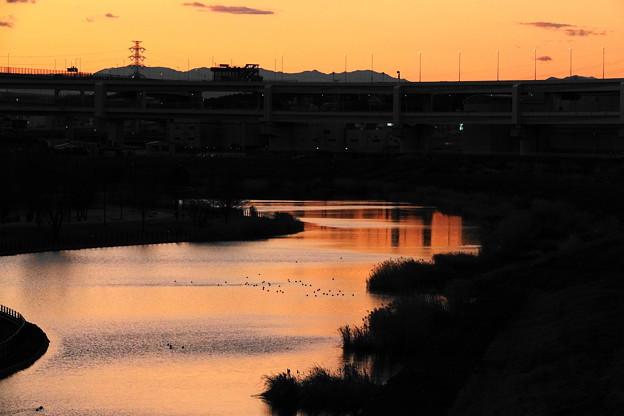 200201_57Y_夕景の遊水地・RX10M3(新横浜) (63)