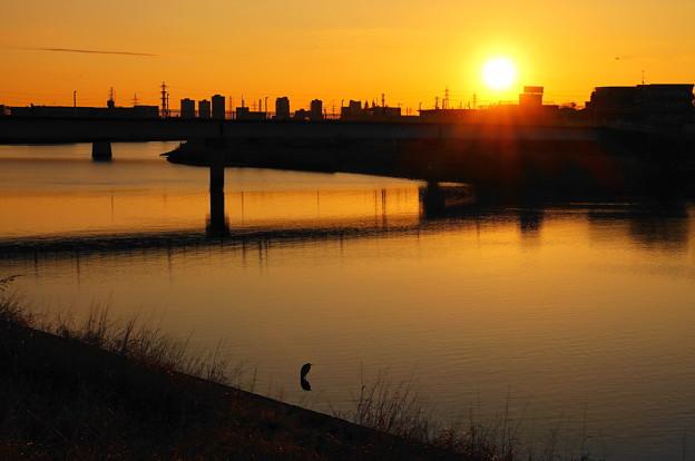 200204_01A_朝景・RX10M3(鶴見川) (10)