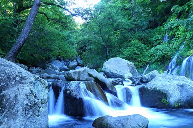 200815_13K_滝と渓谷・RX10M3(吐竜の滝) (31)