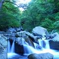Photos: 200815_13K_滝と渓谷・RX10M3(吐竜の滝) (31)