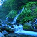 Photos: 200815_13K_滝と渓谷・RX10M3(吐竜の滝) (43-1)