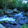 Photos: 200815_13K_滝と渓谷・RX10M3(吐竜の滝) (51)