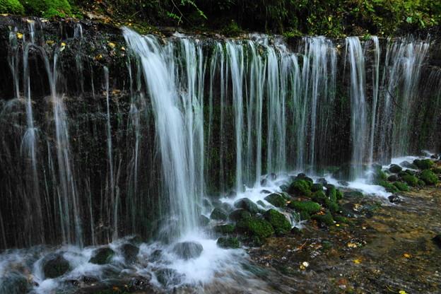 200921_35S_滝をスロー気味で・RX10M3(白糸の滝) (8)