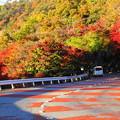 201114_24K_紅葉・RX10M3(和田山紅葉街道) (1)