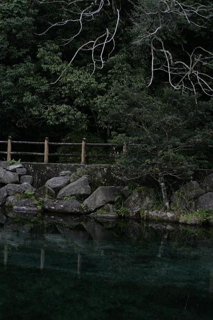 Photos: IMG_2079