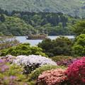 Photos: ツツジ庭園と芦ノ湖の海賊船victory