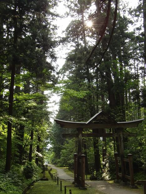 平泉寺白山神社の鳥居